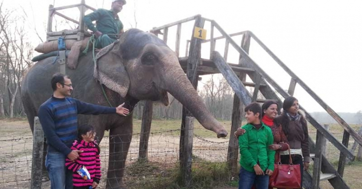 With Elephant in Chitwan