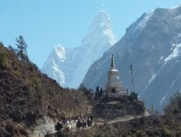 On the way to Tyangboche from Namche