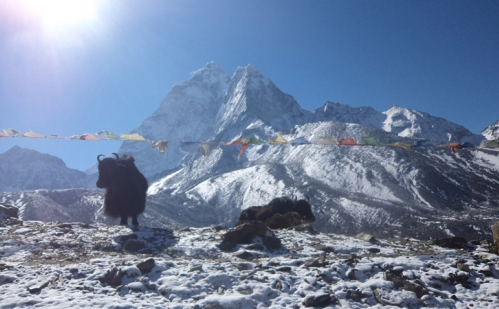 Gosaikunda Trek with Langtang